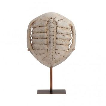 Figura fosil tortuga en resina - 37x13x61h